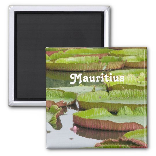 Mauritius Lily Pads Magnet