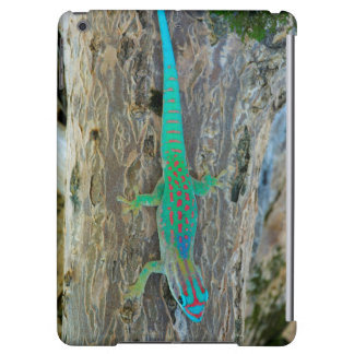 Mauritius Lowland Forest Day Gecko