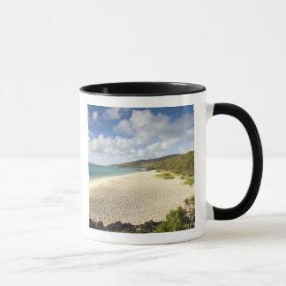 Mauritius, Rodrigues Island, St. Francois, St. Mug