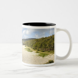 Mauritius, Rodrigues Island, St. Francois, St. Two-Tone Coffee Mug