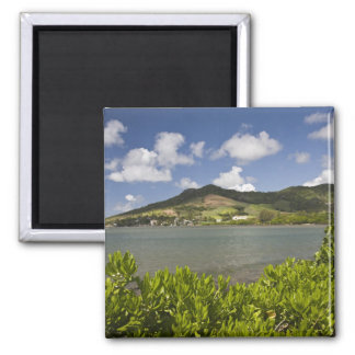 Mauritius, Southern Mauritius, Grand Sable, Square Magnet
