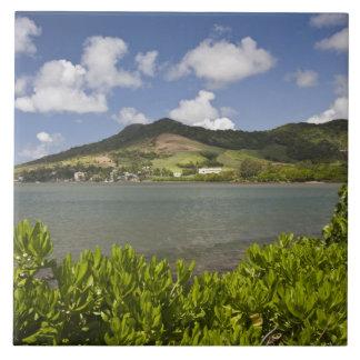 Mauritius, Southern Mauritius, Grand Sable, Tile