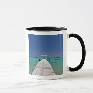 Mauritius, Western Mauritius, Le Morne 2 Mug