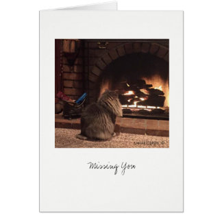 Max the Cat #8 Card