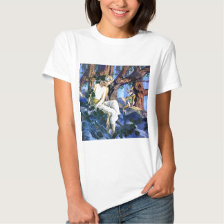 Maxfield Parrish's Fair Princess and the Gnomes Shirts