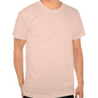 Maxwell & Boltzmann T-shirt