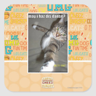 may I haz dis dance? Square Sticker