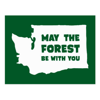 May the Forest Be With You Washington Postcard
