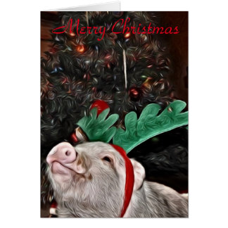 May the spirit of Christmas, Pig Greeting Card