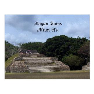 Mayan Ruins, Altun Ha Postcard