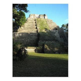 Mayan Ruins at Yaxha, Guatemala Postcard