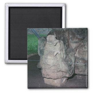 Mayan Ruins N.W. Honduras Photo Designed Color Magnet