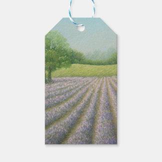Mayfield Lavender in Bloom, Carshalton, Surrey