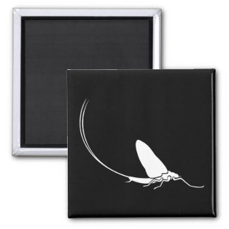 Mayfly Square Magnet