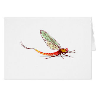 Mayfly vector card