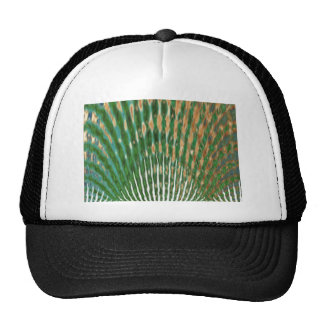 Mayur Pankh - Peacock Feather Hat