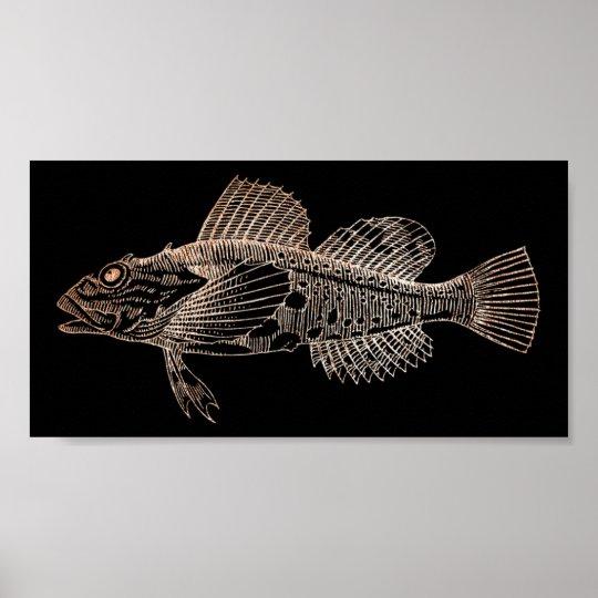 Mazola Deep Sea Fishes Black Pink Rose Gold
