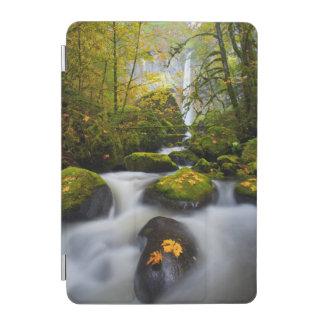 McCord Creek Bigleaf Maple | Columbia Gorge, OR iPad Mini Cover