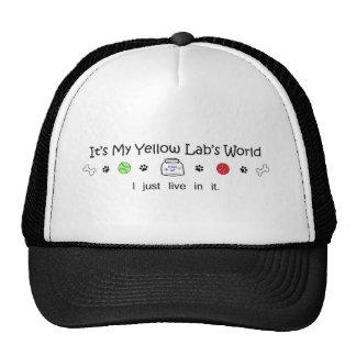 mcoct25c  Yellow Lab Hats