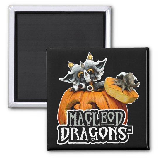 MD Pumpkin Dragon Logo Magnet