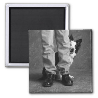 Me and My Shadow - Collie Dog Square Magnet