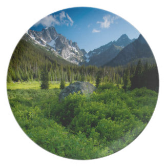 Meadow and Mt. Stuart Dinner Plates