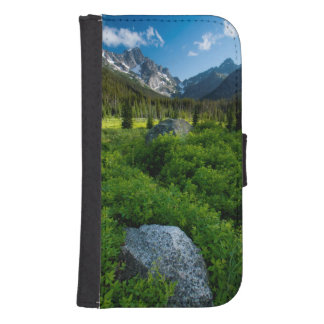 Meadow and Mt. Stuart Samsung S4 Wallet Case