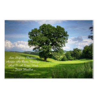 Meadow Haiku Poster