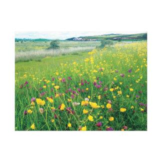 Meadow Landscape Canvas