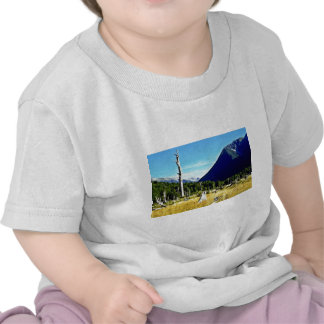 Meadow, Nelson Lakes National Park, South Island T-shirts