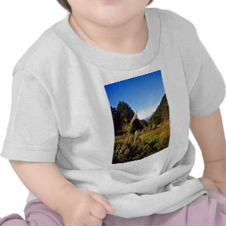 Meadow, Nelson Lakes National Park T-shirt
