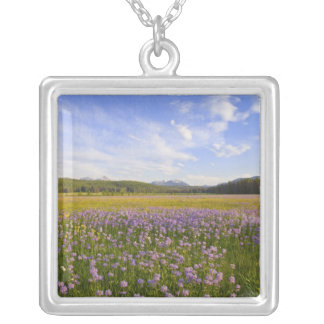 Meadow of penstemon wildflowers in the 2 square pendant necklace