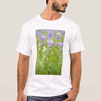 Meadow of penstemon wildflowers in the T-Shirt