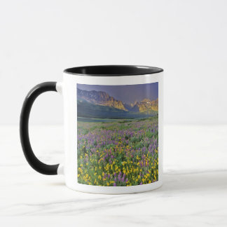 Meadow of wildflowers in the Many glacier Mug