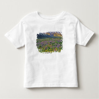 Meadow of wildflowers in the Many glacier Toddler T-Shirt