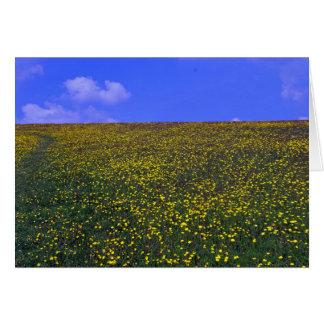 meadow on England Card