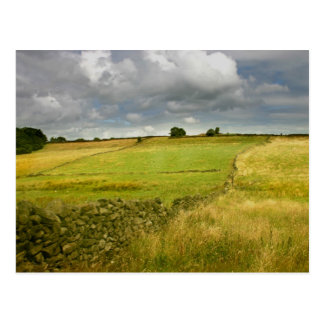Meadows and Walls Postcard