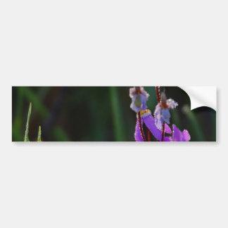 Meadows Wildflowers Dew Bumper Sticker