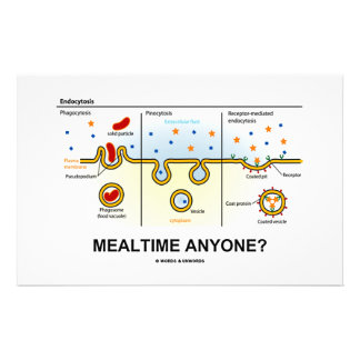 Mealtime Anyone? (Endocytosis Digestion Humour) Personalized Stationery