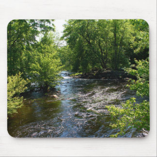 Meandering Pushaw Stream, West Old Town, Maine Mouse Pad