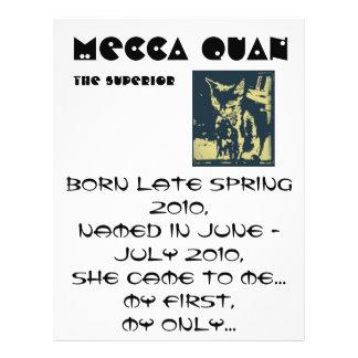 meandmecca009-1, Mecca Quan, born late spring 2... 21.5 Cm X 28 Cm Flyer