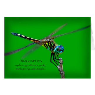 Meaning Of Dragonflies Card