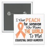Means The World To Me 2 Endometrial Cancer Pin