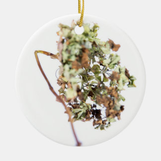 Medallion Hydrangea Christmas Ornament