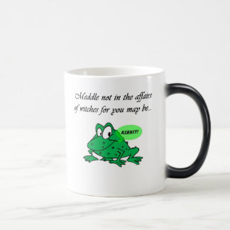 Meddle not in the affairs of witches magic mug