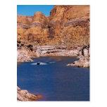 MeddockPhoto_PostCard_WBoard Postcards
