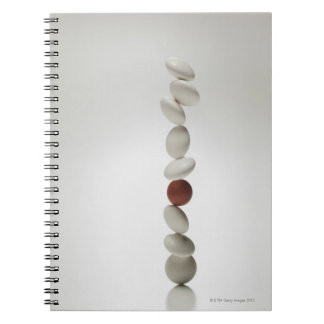 Medical Care 2 Notebook