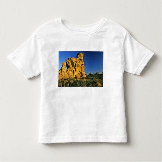 Medicine Rocks State Park near Ekalaka Montana Toddler T-Shirt