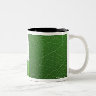 Medicine Two-Tone Coffee Mug