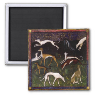 Medieval Greyhound Dogs in the Woods Square Magnet